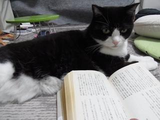 難しい本?
