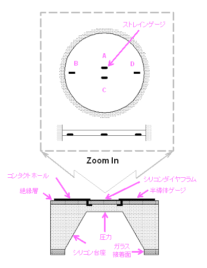 ダイヤフラム-断面構造